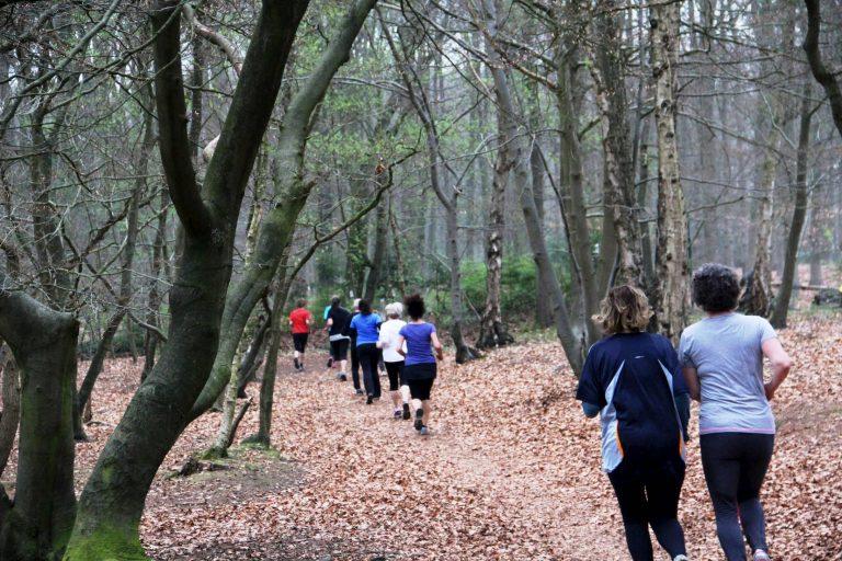 Hardlopen door het bos
